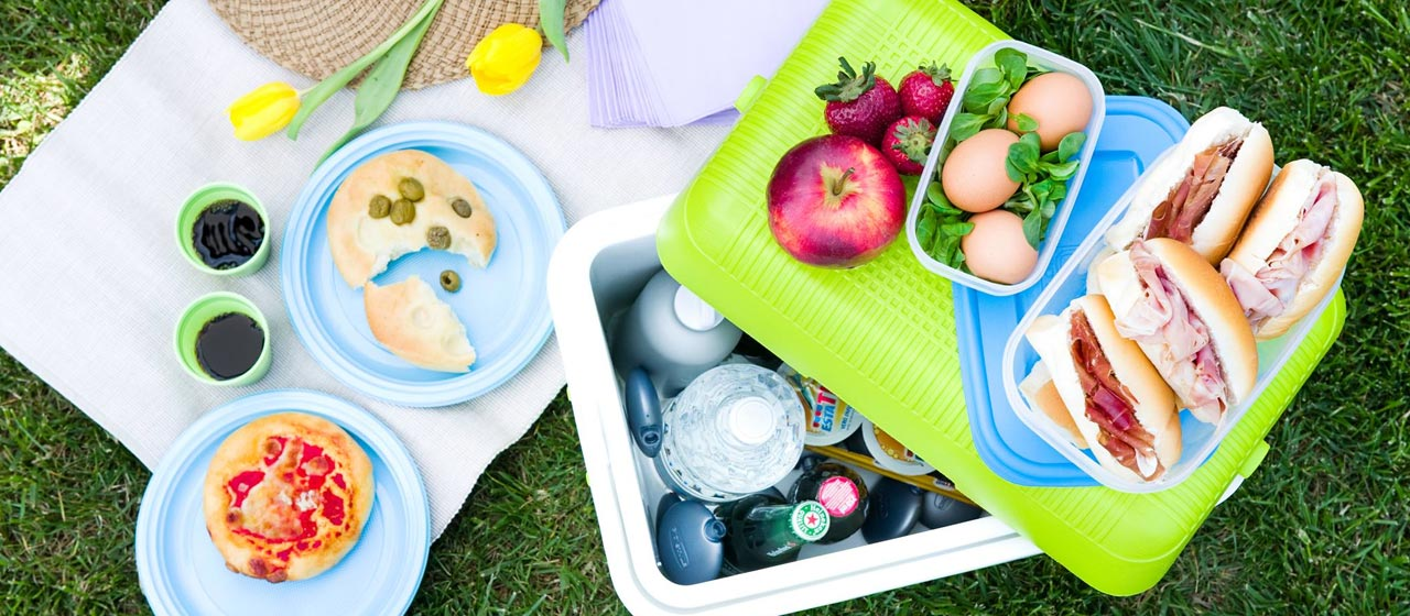 01f455342e6a ingrosso-arredo-giardino-accessori-mare-e-contenitori-frigo-