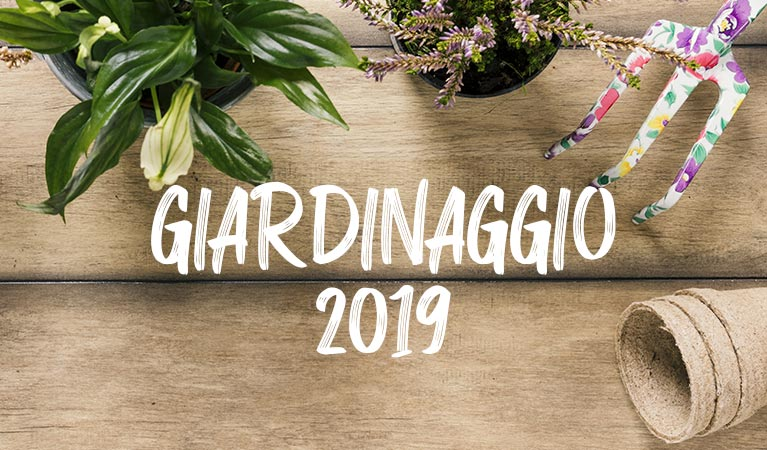 2019 gardening catalogue